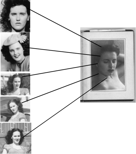The Black Dahlia Case about Elizabeth Short - Steve Hodel